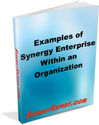 Examine Different Examples of Synergy In Use